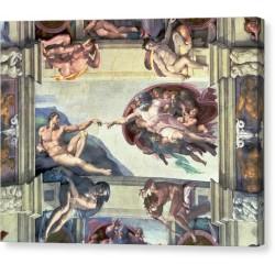 Canvas Michelangelo